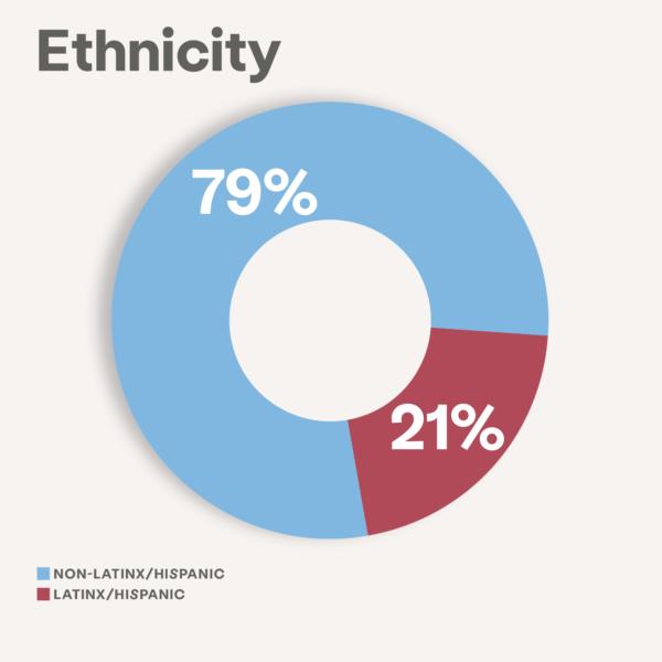 ethnicity impact image